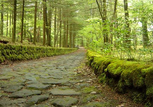 古き良き別荘地・石畳の静かな道
